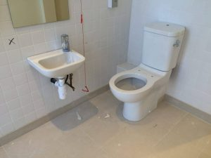 Disabled access WC - access audits and inclusive design could make a real difference